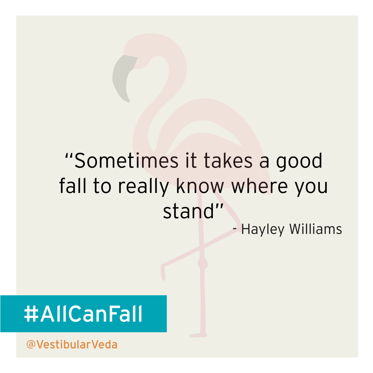 """Sometimes it takes a good fall to really know where you stand"" ― Hayley Williams"