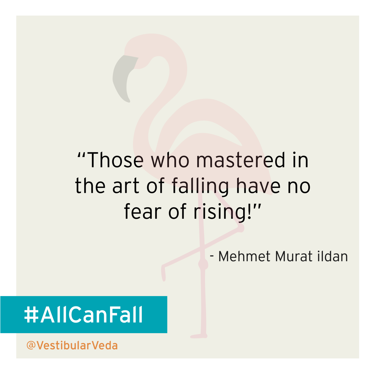 """Those who mastered in the art of falling have no fear of rising!""  ― Mehmet Murat ildan"