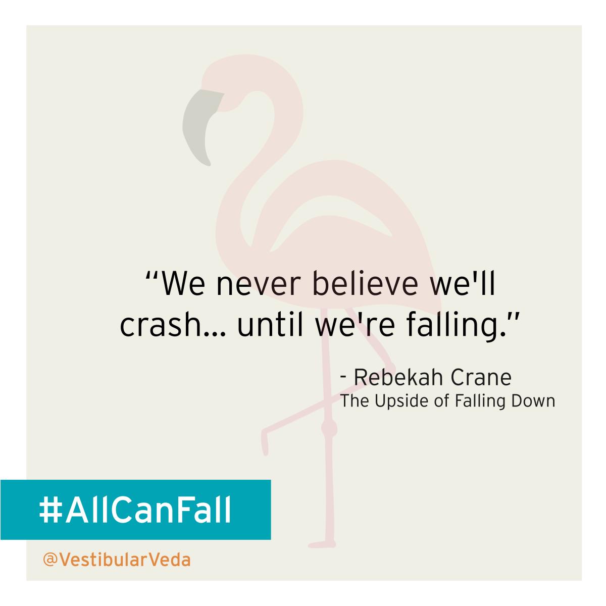 """We never believe we'll crash... until we're falling.""  ― Rebekah Crane, The Upside of Falling Down"