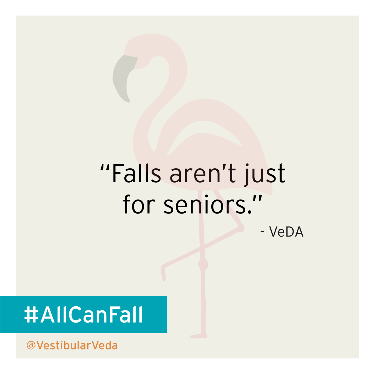 """Falls arent't just for seniors"" -VeDA"